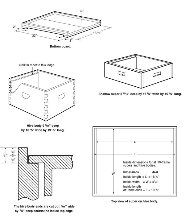 wooden components of a modern bee hive – bee health box sizes diagram  bee health