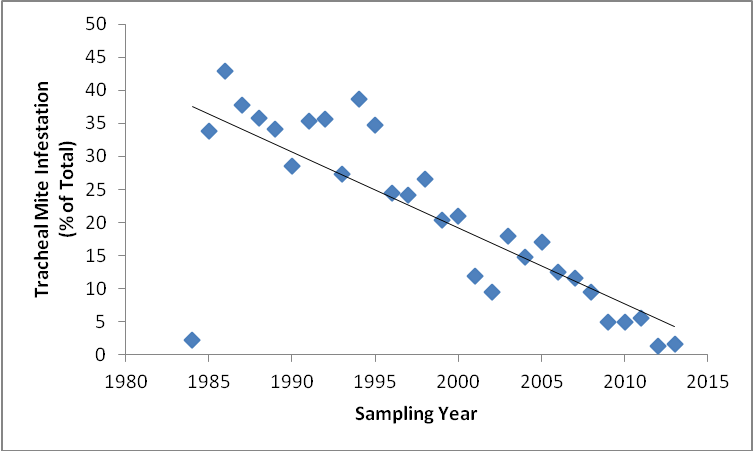 USDA-ARS bee diagnostic lab percentage of tracheal mite infestation of all submitted samples for pest or disease analysis by year.